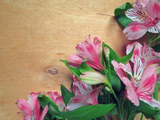 Alstroemeria Flowers on wooden background