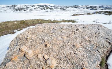 Rock texture, metamorphic rocks, background