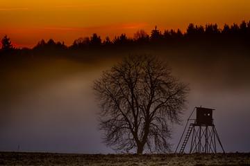 Abendstimmung Sonnenuntergang im Harz