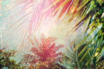 Palm Leave Sun Light Tropical Travel Shabby Effect