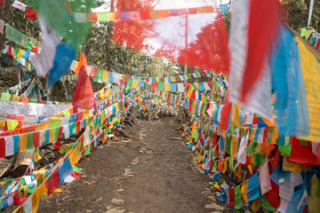Prayer flags on mountain