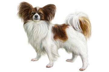 Dog hand draw and paint on white background vector illustration.