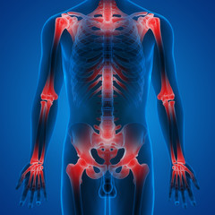 Human Body Joint Bone Pains