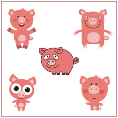 Pig set. Collection isolated pigs on white background. Cartoon pig.