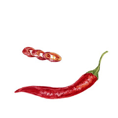 Poster Hot chili Peppers watercolor red chili pepper