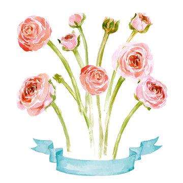 Watercolor blooming Ranunculus set. Hand drawn vector illustration.