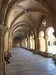 Coimbra Sunlight Cloister