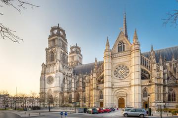 La cathédrale Sainte Croix d'Orléans, portail latéral.
