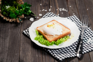 breakfast or lunch , poached egg and white toast , lettuce , herbs, salt and spices on a wooden background
