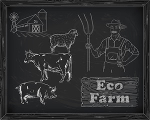 beautiful beef diagram, pork, lamb and farmer