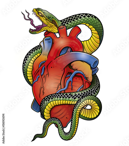 snake and anatomical heart\