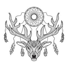 Deer head with horns and dreamcatcher