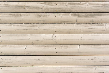 Section of off white wood panelling from a beach hut, suitable for backgrounds of beach, seaside and summer holiday themes. Also suitable for gardening themes.
