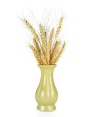 Eer of wheat in a vase isolated on white background