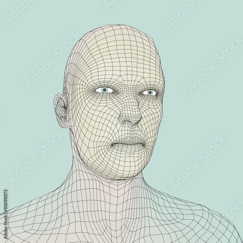 Head of the Person from a 3d Grid  Human Head Wire Model