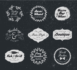 Retro Vintage Logotypes and insignias set. Vector design elements, business signs, logos, identity