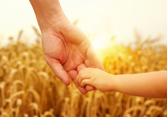 hands of child and father