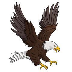 Eagle 005