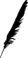 black isolated single straight feather from wing