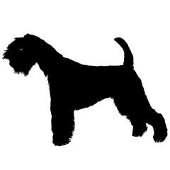 Terrier dog black silhouette