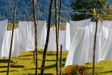 White sheets drying