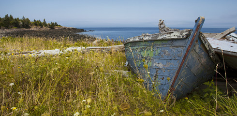 old wrecked boat on grassy coastline in prince edward island can