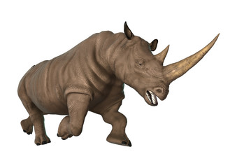 3D Illustration Rhinoceros on White