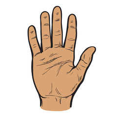 One hand. Hand showing five fingers. A welcome gesture. Stopping gesture. stop character. Opened palm of the hand. Painted vector hand. Contour arm. Illustration of five fingers.