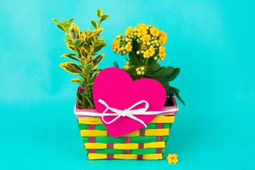 Blumenkörbchen mit Herz