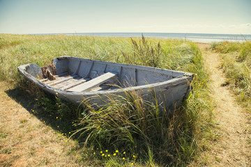 old wrecked boat on grassy coastline in cape bretton nova scotia