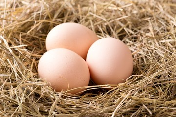 Few hen eggs placed on haystack