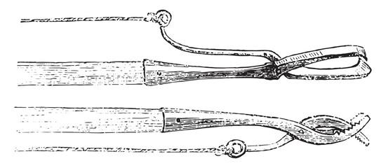 Congress clips, vintage engraving.
