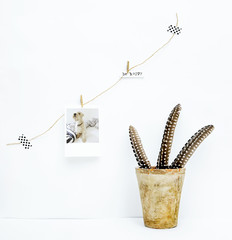 Scandinavian hipster interior design. Vintage with quill on rustic pot. Wish BE HAPPY and dog photo hanging on the wall.