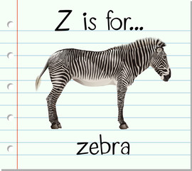 Flashcard letter Z is for zebra
