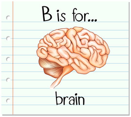 Flashcard alphabet B is for brain