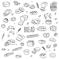 Hand drawn doodle set of cartoon food: rye bread, ciabatta, whole grain bread, bagel, sliced bread, french baguette, croissant Bread set Vector illustration Sketchy bread elements collection
