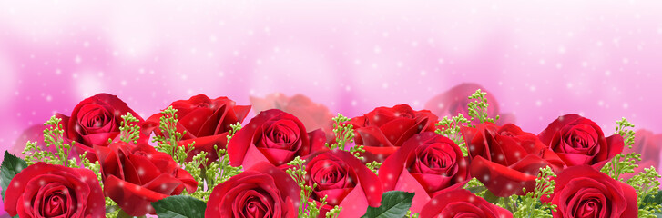 Red roses on pink background with space for your text