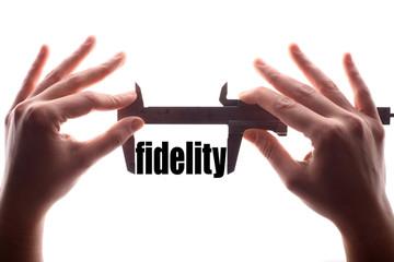 Small fidelity concept