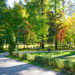 Autumn scenery in the park