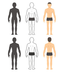 Male body illustration