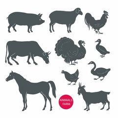 vector set of farm animals cow, sheep, goat, pig, horse. Set of detailed quality vector silhouettes of chicken, rooster, goose, turkey, duck. Vector Illustrations isolated on white background.