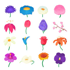 Flower icons set, cartoon style