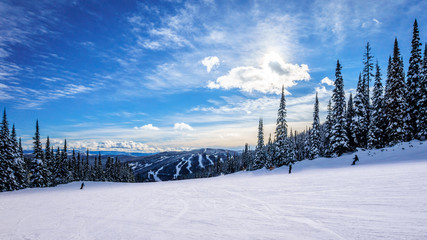 Skiing down smooth slopes under blue sky in the high alpine ski area at Sun Peaks in the Shuswap Highlands of central British Columbia, Canada Wall mural