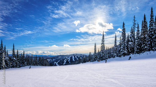 Wall mural Skiing down smooth slopes under blue sky in the high alpine ski area at Sun Peaks in the Shuswap Highlands of central British Columbia, Canada