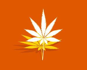 Cannabis leaf on a orange, yellow and white background, marijuana leaf rising, legalization of cannabis, cannabis leaf floating