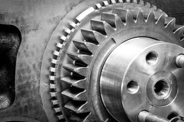 Antriebstechnik, Zahnrad eines Motorgetriebes