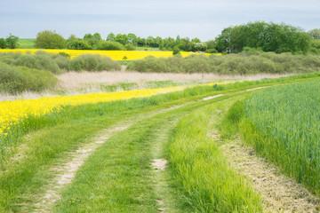 Nachhaltige Landwirtschaft