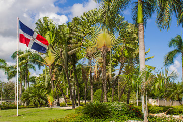 Palm trees and Dominicana Flag