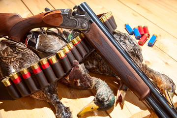 Gun, hunting, a dead duck, and ammunition