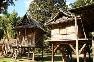 Bambushütte, Bambus, Park, Garten